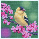 LL316  Gold Finch on Cherry Blossoms 18	Mesh 6x6 Labors Of Love