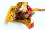 107 Vangogh 13mm Silk Ribbon Painter's Thread