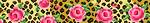 BL606 Leo Rose Bucklette Viola!
