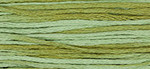 6-Strand Cotton Floss Weeks Dye Works 1191 Dried Sage