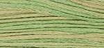 6-Strand Cotton Floss Weeks Dye Works 1189 Butter Bean