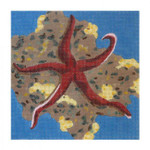 Claire Lloyd Designs CL3610 - Red Starfish