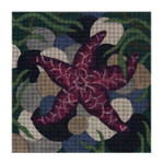 Claire Lloyd Designs CL3600 - Purple Starfish