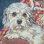 BR012 Barbara Russell Dandie Dinmont Terrier