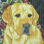 BR027 Barbara Russell Yellow Lab Floral Background