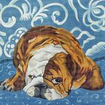 BR01 Barbara Russell Bulldog