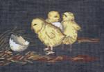 BR018 Barbara Russell Stubbs Chicks