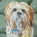 BR101 Barbara Russell Lhasa Apso