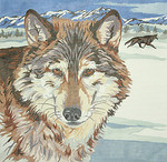 BR144 Barbara Russell The Wolf