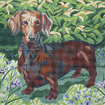 BR194 Barbara Russell Short Haired Dachshund