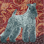BR234 Barbara Russell Kerry Blue Terrier