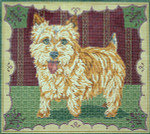 BR253 Barbara Russell Norfolk Terrier