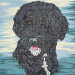 BR222 Barbara Russell Portugese Water Dog