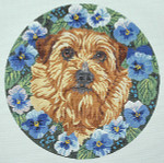 BR252 Barbara Russell Norfolk Terrier