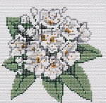 BR345 Barbara Russell Wildflower Coaster Mountain Laurel