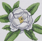 BR345 Barbara Russell Wildflower Coaster Magnolia
