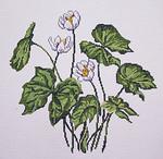 BR343 Barbara Russell Wildflower Twin Leaf