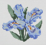 BR345 Barbara Russell Wildflower Coaster Dwarf Crested Iris