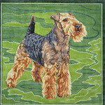 BR312 Barbara Russell Welsh Terrier