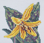 BR345 Barbara Russell Wildflower Coaster Trout Lily
