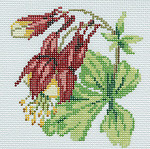 BR345 Barbara Russell Wildflower Coaster Columbine