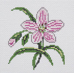 BR345 Barbara Russell Wildflower Coaster Spring Beauty