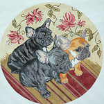BR356 Barbara Russell French Bulldog Pups