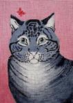 A12 Grey Tabby Cat 6.25x9 18 Mesh Changing Women Designs