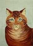 A13 Yellow Tabby Cat 6.25x9 18 Mesh Changing Women Designs
