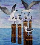 A8 Seagulls 8 x 9 18 Mesh Changing Women Designs