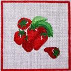 CWD-F3 Strawberries 7 x 7 18  Mesh Changing Women Designs