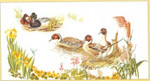 GOK2064A Thea Gouverneur Kit Ducks In The Marsh