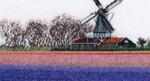 GOK474A Thea Gouverneur Kit Hyacinth Field