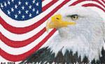 GOK550A Thea Gouverneur Kit American Eagle