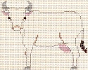 PT-311-A Cow (ecru canvas) Designs by Petei 18 Mesh 5½ x 5½ With Stitch Guide by John Waddlell