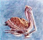 Anne Cram B-1 Manalapan Pelican 14 Mesh