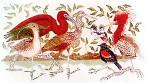 Anne Cram B-12 Ibis & Egret 14 Mesh
