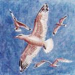 Anne Cram B-2 Seagulls 18 Mesh