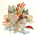 Anne Cram B-33 Horned Owl 18 Mesh