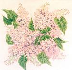 Anne Cram F-27-4 Caroline's Lilacs 18 Mesh