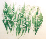 Anne Cram F-27-3 Caroline's Lilly Of The Valley 18 Mesh