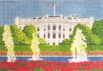 Anne Cram SM-53 The White House 14 Mesh