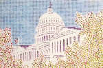 Anne Cram SM-73 The Capitol With Flag 14 Mesh