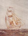 Anne Cram SP-17 Tall Ship 18 Mesh