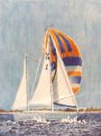 Anne Cram SP-22 Cruising Sail 18 Mesh
