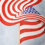Anne Cram SP-42-B Capitol Flag 14. Mesh