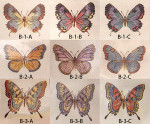 Anne Cram SM-B-3-B Butterflies 18 Mesh