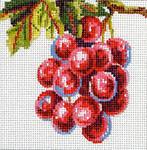 FF147 Grapes 5x5 13M Colors of Praise