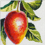 FF143 Mango 5x5 13M Colors of Praise