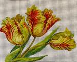 FF261 Parrot Tulips 10x8 13 Mesh Colors of Praise